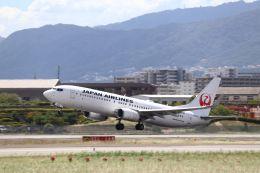 Gripen-YNさんが、伊丹空港で撮影した日本航空 737-846の航空フォト(飛行機 写真・画像)