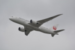 LEGACY-747さんが、香港国際空港で撮影した日本航空 787-8 Dreamlinerの航空フォト(飛行機 写真・画像)