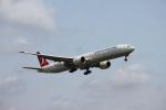 mojioさんが、成田国際空港で撮影したターキッシュ・エアラインズ 777-3F2/ERの航空フォト(飛行機 写真・画像)