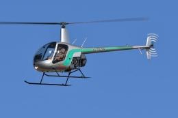 ブルーさんさんが、名古屋飛行場で撮影したセコインターナショナル R22 Betaの航空フォト(飛行機 写真・画像)