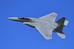 shiosabaさんが、岐阜基地で撮影した航空自衛隊 F-15DJ Eagleの航空フォト(飛行機 写真・画像)