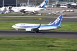 Gripen-YNさんが、羽田空港で撮影した全日空 737-781の航空フォト(飛行機 写真・画像)