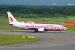 LEGACY-747さんが、新千歳空港で撮影した中国国際航空 737-86Nの航空フォト(飛行機 写真・画像)