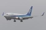 木人さんが、成田国際空港で撮影した全日空 737-781の航空フォト(飛行機 写真・画像)
