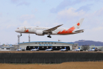 wildcookieさんが、松島基地で撮影した日本航空 787-8 Dreamlinerの航空フォト(飛行機 写真・画像)