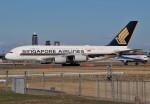 みっしーさんが、成田国際空港で撮影したシンガポール航空 A380-841の航空フォト(飛行機 写真・画像)
