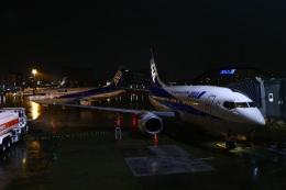 ぼのさんが、伊丹空港で撮影したANAウイングス 737-54Kの航空フォト(飛行機 写真・画像)