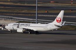 みっしーさんが、羽田空港で撮影した日本航空 737-846の航空フォト(飛行機 写真・画像)
