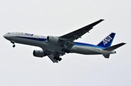 amagoさんが、伊丹空港で撮影した全日空 777-281の航空フォト(飛行機 写真・画像)