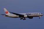 こだしさんが、羽田空港で撮影した日本航空 777-246/ERの航空フォト(飛行機 写真・画像)