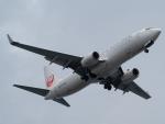 名無しの権兵衛さんが、羽田空港で撮影した日本航空 737-846の航空フォト(飛行機 写真・画像)