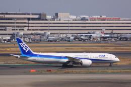 けいとパパさんが、羽田空港で撮影した全日空 787-9の航空フォト(飛行機 写真・画像)