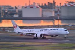 シグナス021さんが、羽田空港で撮影した日本航空 A350-941XWBの航空フォト(飛行機 写真・画像)