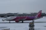 Rsaさんが、新千歳空港で撮影したピーチ A320-214の航空フォト(飛行機 写真・画像)