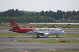 mojioさんが、成田国際空港で撮影した深圳航空 A320-214の航空フォト(飛行機 写真・画像)