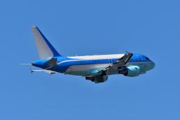 ひこ☆さんが、成田国際空港で撮影した中国企業所有 A318-112 CJ Eliteの航空フォト(飛行機 写真・画像)