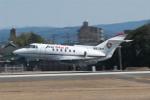 髪刈虫(かみきりむし)さんが、名古屋飛行場で撮影したAIRMED INTERNATIONAL LLC BAe-125-800Aの航空フォト(飛行機 写真・画像)