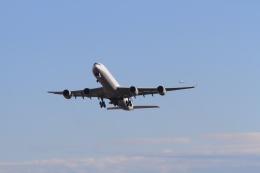 TAK_HND_NRTさんが、成田国際空港で撮影したルフトハンザドイツ航空 A340-642Xの航空フォト(飛行機 写真・画像)