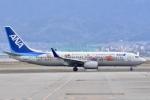 FLYING  HONU好きさんが、関西国際空港で撮影した全日空 737-881の航空フォト(飛行機 写真・画像)