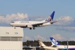 TAK_HND_NRTさんが、成田国際空港で撮影したユナイテッド航空 737-724の航空フォト(飛行機 写真・画像)