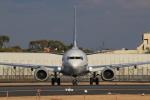 キイロイトリさんが、伊丹空港で撮影した全日空 737-8ALの航空フォト(飛行機 写真・画像)