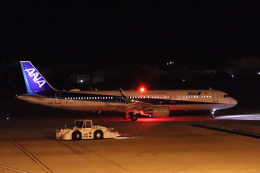 ANA大好き男さんが、松山空港で撮影した全日空 A321-211の航空フォト(飛行機 写真・画像)