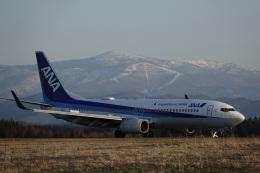 gomachanさんが、大館能代空港で撮影した全日空 737-881の航空フォト(飛行機 写真・画像)