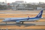 ルイさんが、伊丹空港で撮影した全日空 737-881の航空フォト(飛行機 写真・画像)