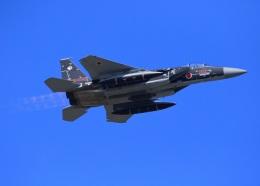 shiosabaさんが、小松空港で撮影した航空自衛隊 F-15DJ Eagleの航空フォト(飛行機 写真・画像)