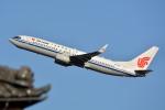 トロピカルさんが、成田国際空港で撮影した中国国際航空 737-89Lの航空フォト(飛行機 写真・画像)