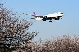 まいけるさんが、成田国際空港で撮影したデルタ航空 A350-941XWBの航空フォト(飛行機 写真・画像)
