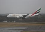 銀苺さんが、成田国際空港で撮影したエミレーツ航空 A380-861の航空フォト(飛行機 写真・画像)