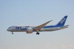 LEGACY-747さんが、成田国際空港で撮影した全日空 787-8 Dreamlinerの航空フォト(飛行機 写真・画像)