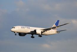 LEGACY-747さんが、成田国際空港で撮影したユナイテッド航空 787-8 Dreamlinerの航空フォト(飛行機 写真・画像)