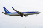 apphgさんが、静岡空港で撮影した全日空 737-881の航空フォト(飛行機 写真・画像)