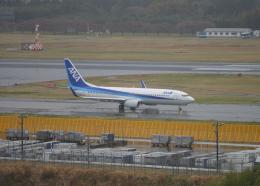 銀苺さんが、成田国際空港で撮影した全日空 737-881の航空フォト(飛行機 写真・画像)