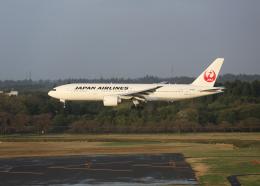 銀苺さんが、成田国際空港で撮影した日本航空 777-246/ERの航空フォト(飛行機 写真・画像)