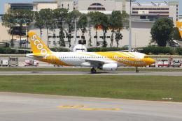 OMAさんが、シンガポール・チャンギ国際空港で撮影したスクート A320-232の航空フォト(飛行機 写真・画像)