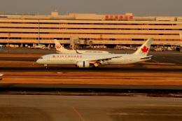 G-BNLYさんが、羽田空港で撮影したエア・カナダ 787-9の航空フォト(飛行機 写真・画像)