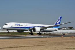 どんちんさんが、伊丹空港で撮影した全日空 787-9の航空フォト(飛行機 写真・画像)