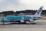 ANA744Foreverさんが、成田国際空港で撮影した全日空 A380-841の航空フォト(飛行機 写真・画像)