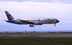 こうきさんが、函館空港で撮影した全日空 767-381の航空フォト(飛行機 写真・画像)
