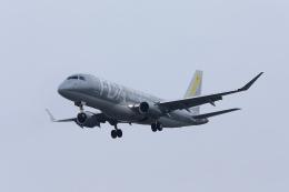 きまぐれまささんが、名古屋飛行場で撮影したフジドリームエアラインズ ERJ-170-200 (ERJ-175STD)の航空フォト(飛行機 写真・画像)