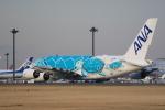 flyskyさんが、成田国際空港で撮影した全日空 A380-841の航空フォト(飛行機 写真・画像)