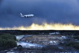パンダさんが、成田国際空港で撮影した日本航空 777-246/ERの航空フォト(飛行機 写真・画像)