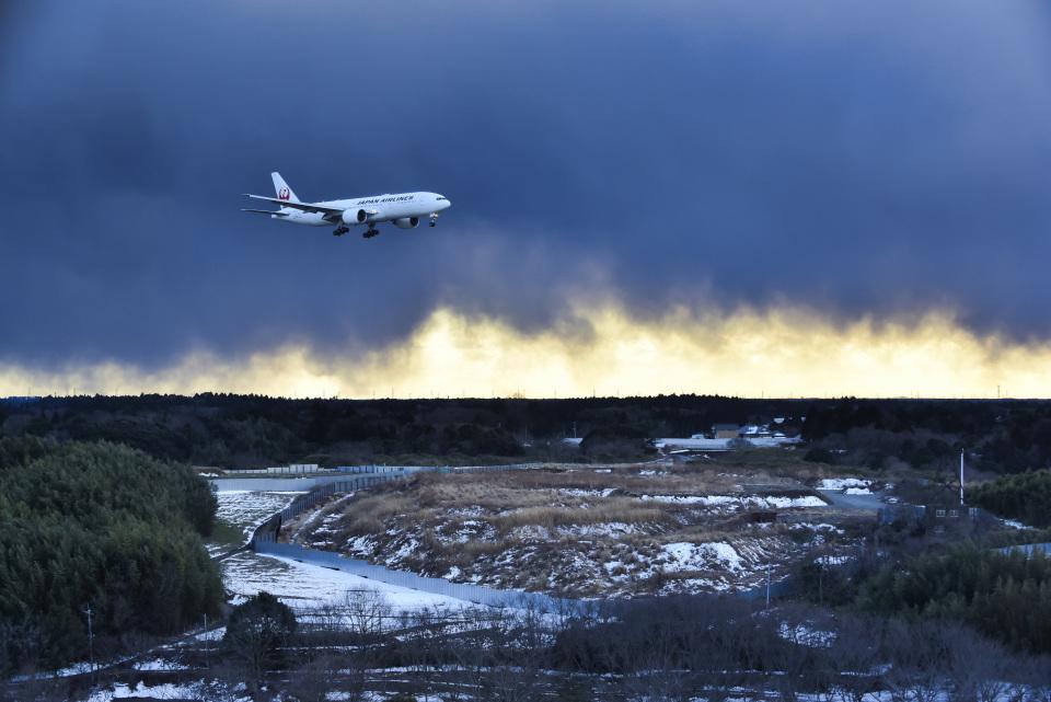 パンダさんの日本航空 Boeing 777-200 (JA707J) 航空フォト