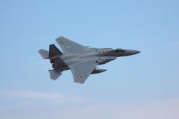 赤ちんさんが、茨城空港で撮影した航空自衛隊 F-15J Eagleの航空フォト(飛行機 写真・画像)