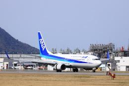 いんふぃさんが、松山空港で撮影した全日空 737-881の航空フォト(飛行機 写真・画像)
