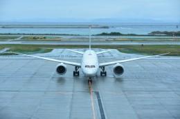 M.Tさんが、那覇空港で撮影した全日空 787-9の航空フォト(飛行機 写真・画像)