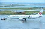M.Tさんが、那覇空港で撮影した日本トランスオーシャン航空 737-8Q3の航空フォト(飛行機 写真・画像)